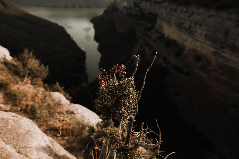 reboda en el Morro de l'Abella - Barcelona